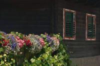 Steiermark / Österreich - olfd farmhouse with flowers
