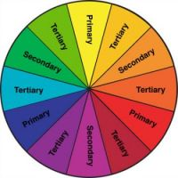 Spin The Color Wheel
