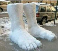 Two feet of snow in Cornwall.