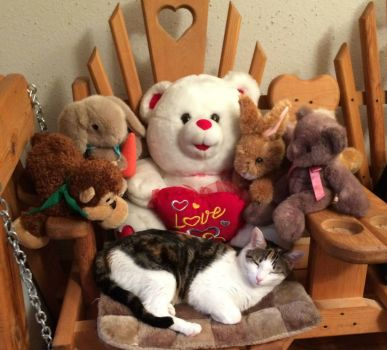 Kitty Button and friends