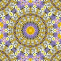 kaleidoscope 318 daisies very large