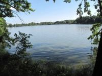 From the Posměch Fishpond