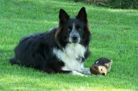 Trapper with his friend the woodchuck...