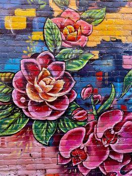 Roses Beamsville
