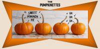 The Pumpkinette's