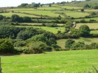 Cornish Coutryside