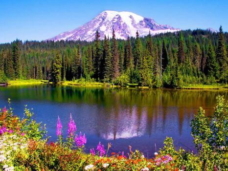 Mt Olympia Washington