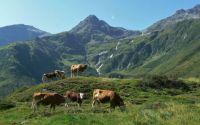 Údolí Bad Gastein - Rakousko