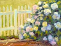 Hydrangea and Picket Fence