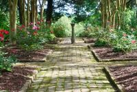 In the shade garden at historic Cragfont . . in Castalian Springs, Tennessee
