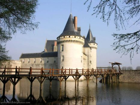Castle of Sully sur Loire, France