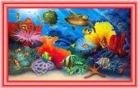 Turtle Reef  by David Miller