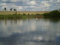 45 Zlatnický rybník