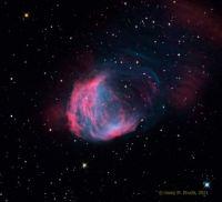 """""""The Medusa Nebula"""""""