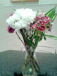 Flowers in a Vase  (9)