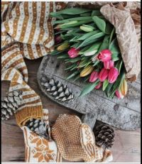 Tulips, Pinecones, Sweater, and Mittens