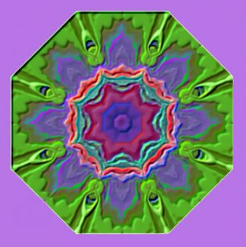 Kaleidoscope from a Bromeliad