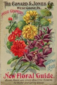 1898 Flower Seed Catalogue