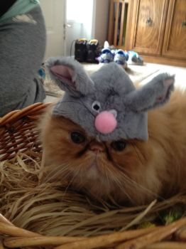 Easter Marvin