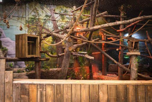 Sloth Retirement Habitat