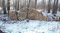 Lots of wood at Pigeon Lake