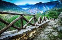 Hiking Path & Fence