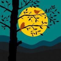 Moonlight Chat