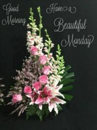 Good Morning - Have a Beautiful  Monday!