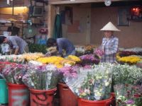 Flower market 1, Vietnam.