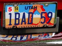 1 BAD 59 License Plate