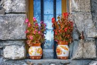 Flowers/Vases On Window Sill