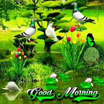 Good Morning on this First of May