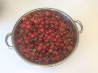 Life is Like a Bowl of Cherries