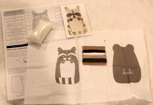 Embroidery Raccoon Kit