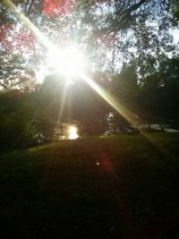 a beautiful summer day