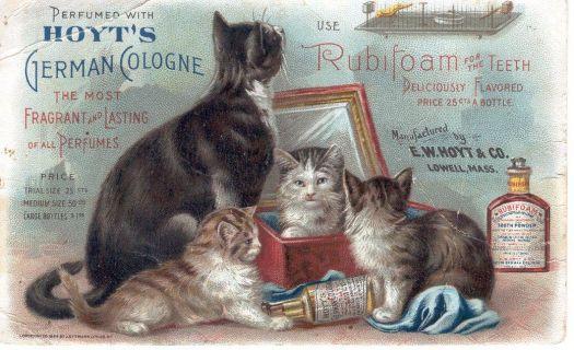 Vintage Postcard Advertisement #1