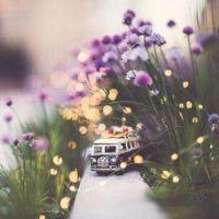 mini Journey around the world