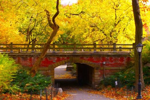 Central Park Red Bridge