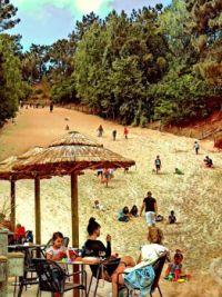 Playing in the dunes in Schoorl