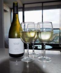 Yet another NZ Sauvignon Blanc - Catalina sounds