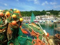 Fishing nets, Lyme Regis