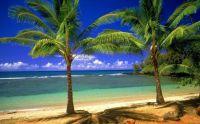 Ráj na pláži