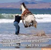 Something touched my foot!! Something touched my foot!!