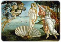 Birth of Venus, 1484-1486