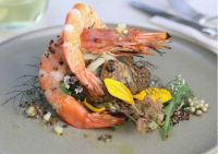 Grilled sunchoke, fennel and shrimp