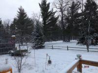 November 19 snow