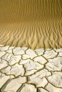 *1.  ~ 'Where cracked mud meets crinkled dunes'