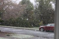 First snow  1-26-21/