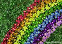 Rainbow Flower Bed