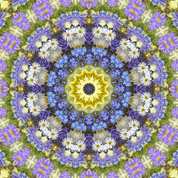 kaleidoscope 319 daisies 2 large